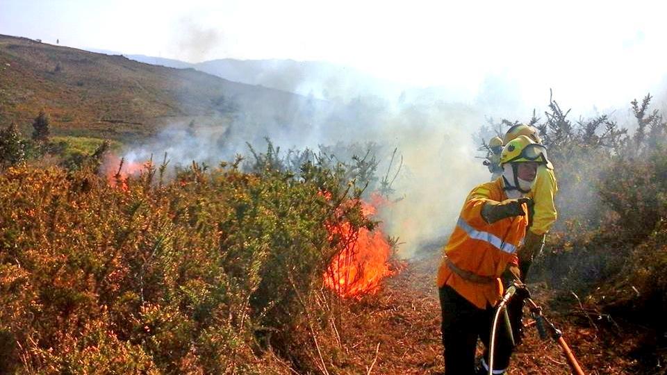14 concelhos do país em risco máximo de incêndio