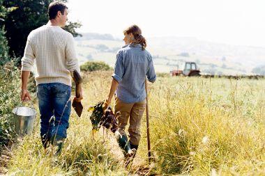 Aberto período de apresentação de candidaturas a pequenos investimentos em produtos agrícolas