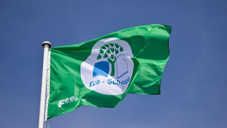 Escola do 1.º Ciclo de Figueiró da Granja recebe comemorações do Dia Mundial do Ambiente