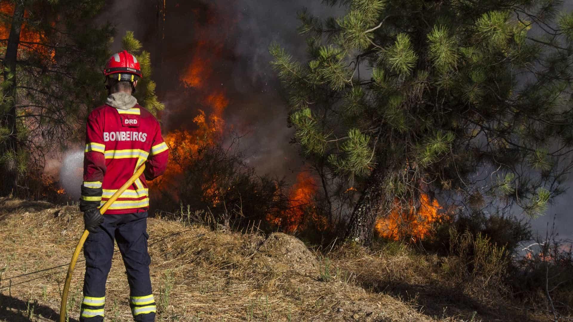 Vila Nova de Foz Coa e Figueira de Castelo Rodrigo em risco máximo de incêndio