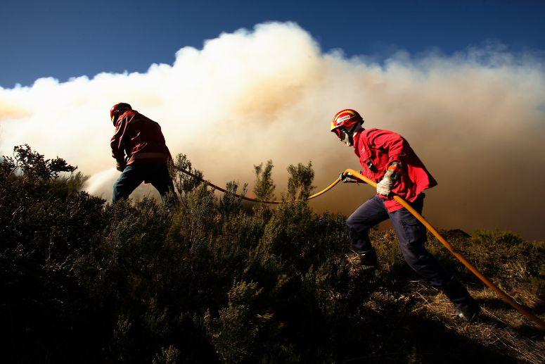 Mais de 50 concelhos em risco máximo de incêndio