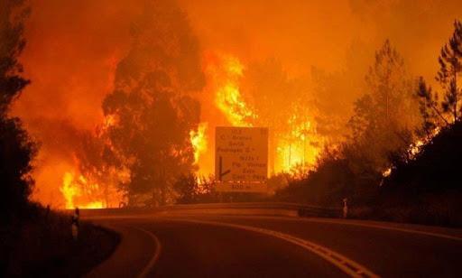 Regiões Centro e Norte merecem mais atenção na prevenção aos incêndios – AGIF