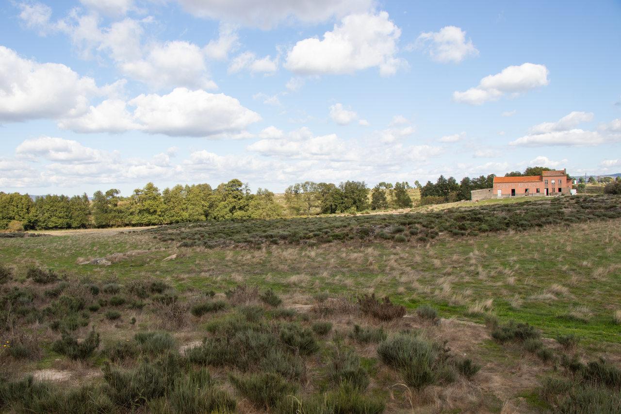 Município de Gouveia arrenda parcela da Quinta Nevada para fixação de investimento na área das energias renováveis